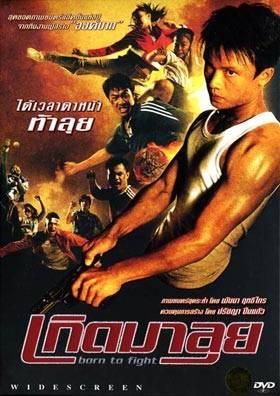 Visuel Born to Fight / Kerd ma lui (Films)