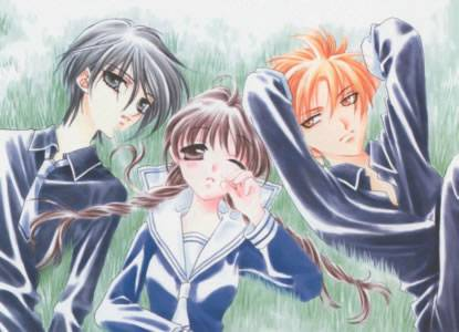 Visuel Fruits Basket / Fruits Basket (Shōjo)