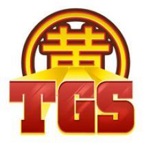 Visuel Toulouse Game Show 9ème édition - 28 et 29 novembre 2015