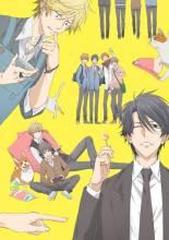 Visuel Hitorijime My Hero, l'anime