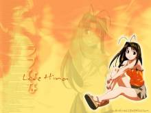 Wallpaper/fond d'écran Love Hina / Love Hina (Animes)
