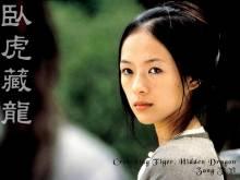 Wallpaper/fond d'écran Tigre et Dragon / Wò Hǔ Cáng Lóng (臥虎藏龍) / Crouching Tiger, Hidden Dragon (Films)