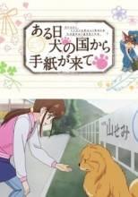 Visuel L'héritier de Hachiko