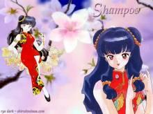 Wallpaper/fond d'écran Ranma ½ / Ranma nimbu no ichi ( ½ ) (Shōnen)