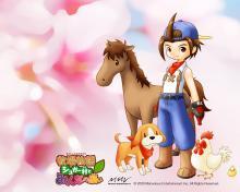 Wallpaper/fond d'écran Harvest Moon DS /  (Jeux vidéo)