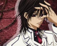 Wallpaper/fond d'écran Vampire Knight / Vampire Knight (Animes)
