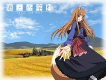 Wallpaper/fond d'écran Spice and Wolf / Spice and Wolf (Animes)