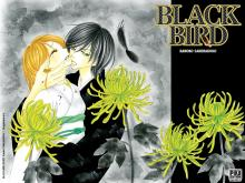 Wallpaper/fond d'écran Black Bird / Black Bird (Shōjo)